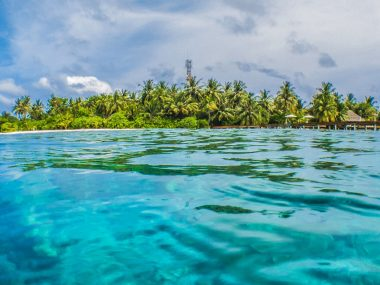 maldives surf guide surfing resorts local islands budget surf charter