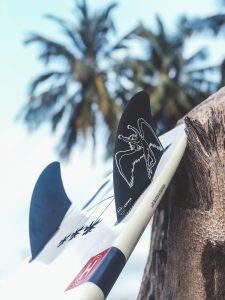 Palm Bay bali zephyr fins Chumlee firewire