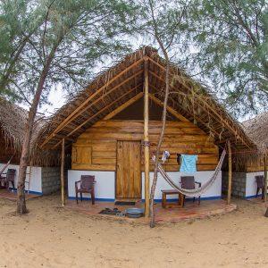 best surf camp sri lanka arugam bay