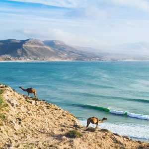 Surf Camp Morocco surf berbere review taghazout surf spots learn to surf 2