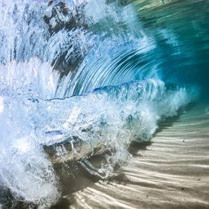underwater gopro photography tips mitch gilmore